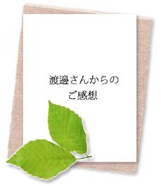studentvoie-banner4